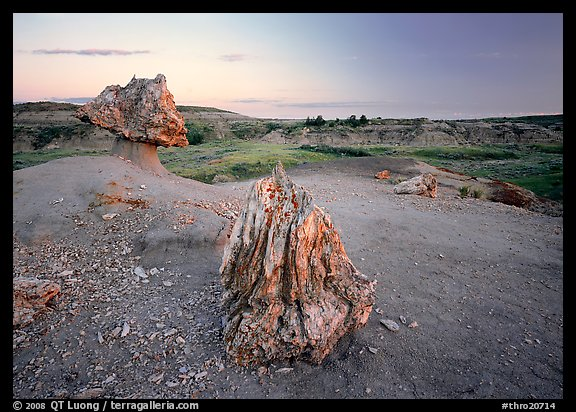 Pedestal petrified log and petrified stump sunset,. Theodore Roosevelt  National Park (color)