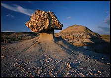 Pedestal petrified log and badlands, late afternoon. Theodore Roosevelt  National Park ( color)