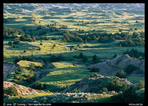 Prairie, trees, and badlands, Boicourt overlook, South Unit. Theodore Roosevelt National Park (color)