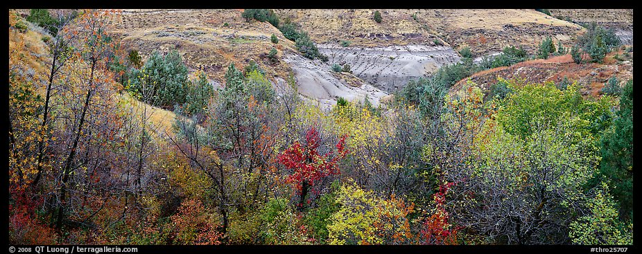 Badlands landscape in autumn. Theodore Roosevelt National Park (color)