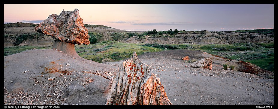 Petrified wood in badlands landscape. Theodore Roosevelt  National Park (color)