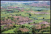 Painted Canyon. Theodore Roosevelt National Park ( color)