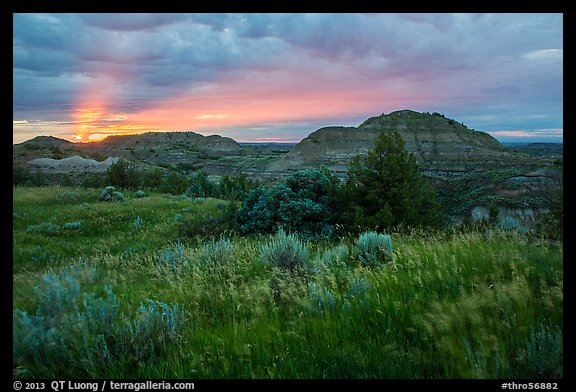 Sunset over grasses and badlands. Theodore Roosevelt National Park (color)