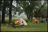 Cottonwood Campground. Theodore Roosevelt National Park ( color)