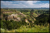 North Dakota badlands landscape. Theodore Roosevelt National Park ( color)