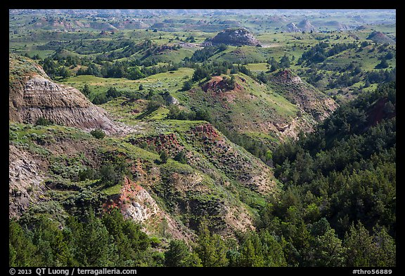 Vegetation-covered buttes. Theodore Roosevelt National Park (color)
