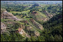 Vegetation-covered buttes. Theodore Roosevelt National Park ( color)