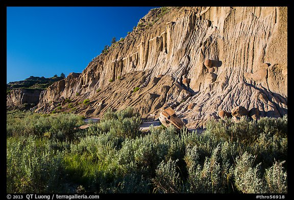Grasses and cliff with cannonball concretions. Theodore Roosevelt National Park (color)