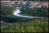 Grasses, Little Missouri river bend and badlands. Theodore Roosevelt National Park, North Dakota, USA. (color)
