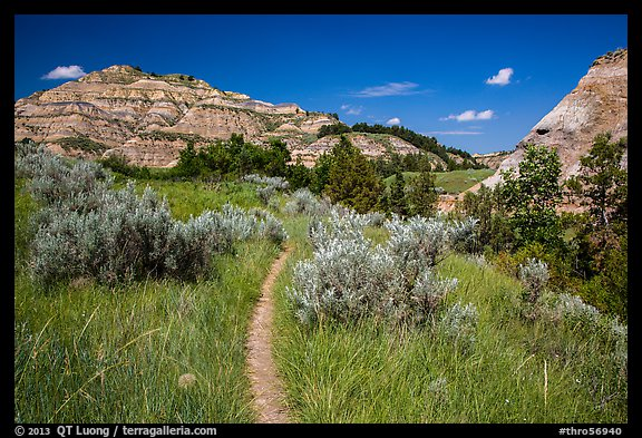 Caprock coulee trail. Theodore Roosevelt National Park (color)