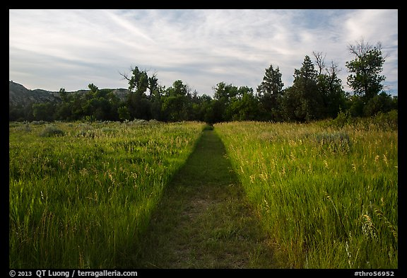 Trail through grasses, Elkhorn Ranch Unit. Theodore Roosevelt National Park (color)
