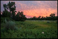 Meadow and colorful sunset clouds, Elkhorn Ranch Unit. Theodore Roosevelt National Park, North Dakota, USA. (color)