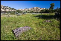 Roosevelt Elkhorn Ranch site with foundation stone. Theodore Roosevelt National Park, North Dakota, USA. (color)