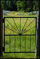 Entrance gate to Elkhorn Ranch homestead. Theodore Roosevelt National Park, North Dakota, USA. (color)