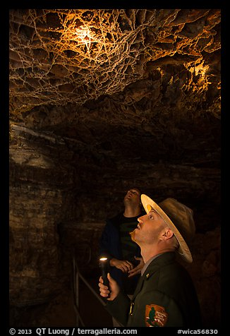 Ranger pointing flashlight at boxwork. Wind Cave National Park (color)