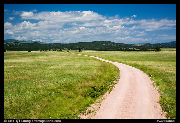 Gravel road through Red Valley. Wind Cave National Park (color)