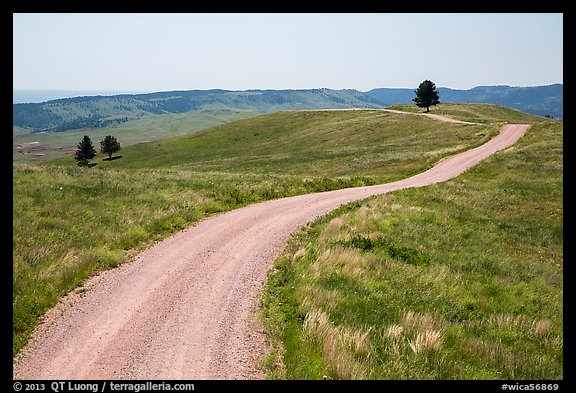 Unpaved road. Wind Cave National Park (color)