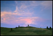 Hills, sunset. Wind Cave National Park, South Dakota, USA.