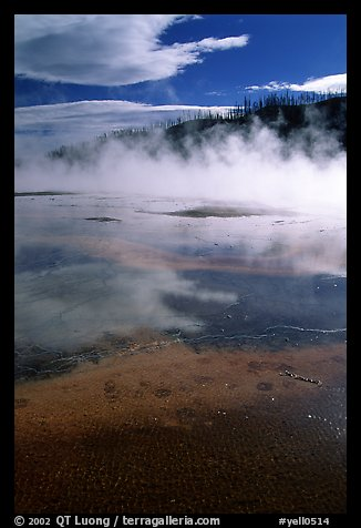 Great prismatic springs, thermal steam, and hill,  Midway geyser basin. Yellowstone National Park (color)
