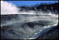 Steam and hill, Midway geyser basin. Yellowstone National Park, Wyoming, USA.