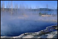 Pools, West Thumb geyser basin. Yellowstone National Park, Wyoming, USA. (color)