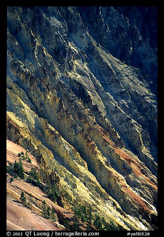 Canyon slopes, Grand Canyon of Yellowstone. Yellowstone National Park, Wyoming, USA.