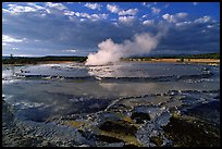 Great Fountain geyser. Yellowstone National Park ( color)