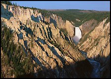 Wide view of Grand Canyon of the Yellowstone, morning. Yellowstone National Park, Wyoming, USA. (color)