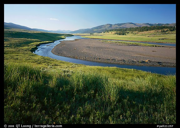 Meadow and river in wide Lamar Valley. Yellowstone National Park, Wyoming, USA.