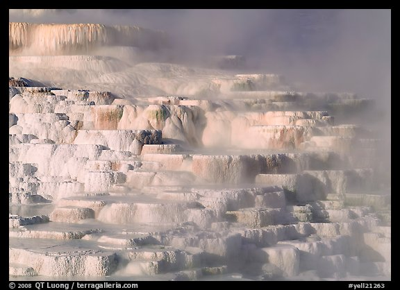 Minerva travertine terraces, Mammoth Hot Springs. Yellowstone National Park, Wyoming, USA.