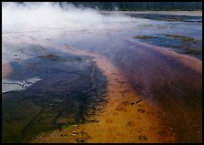 Great prismatic springs, Midway geyser basin. Yellowstone National Park, Wyoming, USA. (color)
