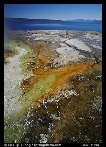 West Thumb geyser basin and Yellowstone lake. Yellowstone National Park (color)