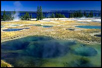 West Thumb Geyser Basin. Yellowstone National Park, Wyoming, USA. (color)