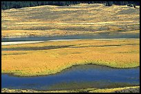 Yellowstone River and meadow in fall. Yellowstone National Park, Wyoming, USA. (color)
