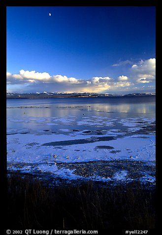 Yellowstone Lake with frozen shores, sunset. Yellowstone National Park (color)