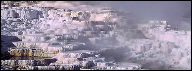 Thermal travertine terraces. Yellowstone National Park (Panoramic color)