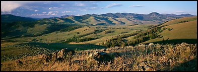 Hills in summer. Yellowstone National Park (Panoramic color)
