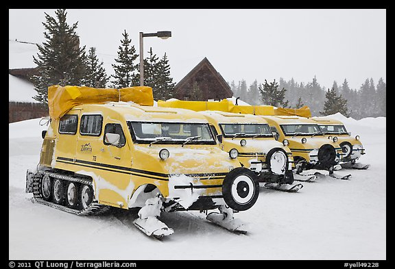 Snow coaches parked at Flagg Ranch. Yellowstone National Park (color)