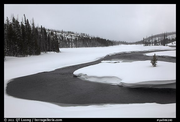 Lewis River valley in winter. Yellowstone National Park (color)