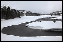 Lewis River valley in winter. Yellowstone National Park ( color)