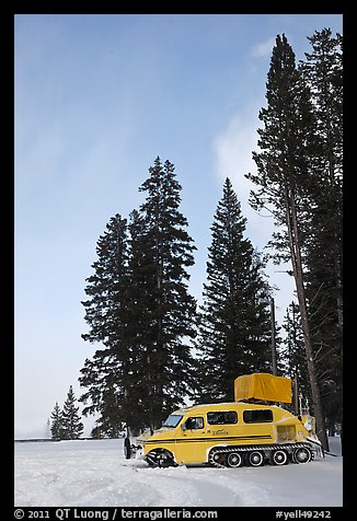 Snowcoach and trees. Yellowstone National Park, Wyoming, USA.