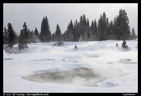 Steam rising from pool in winter, West Thumb. Yellowstone National Park, Wyoming, USA.