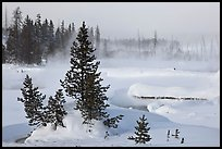 Snow-covered West Thumb thermal basin. Yellowstone National Park, Wyoming, USA. (color)