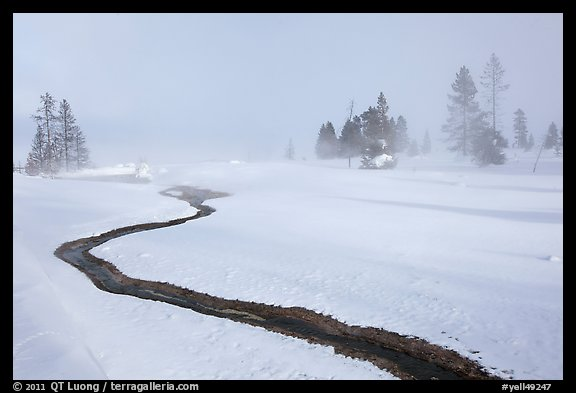 Thermal run-off and snowy landscape. Yellowstone National Park (color)