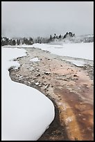 Thermal run-off stream contrasts with snowy landscape. Yellowstone National Park, Wyoming, USA.