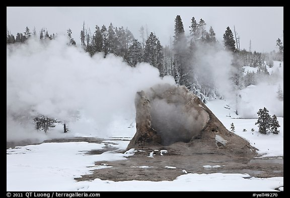 Giant Geyser cone and steam in winter. Yellowstone National Park, Wyoming, USA.