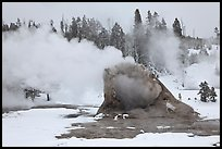 Giant Geyser cone and steam in winter. Yellowstone National Park, Wyoming, USA. (color)