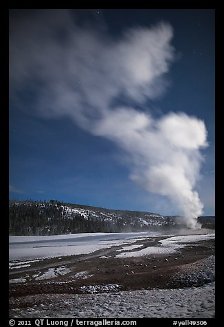 Plume, Old Faithful geyser, winter night. Yellowstone National Park (color)