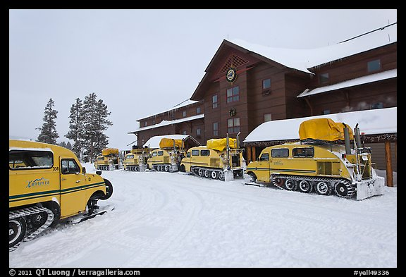 Winter Snowcoaches in front of Old Faithful Snow Lodge. Yellowstone National Park (color)