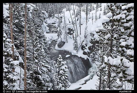 Snowy forest and Kepler Cascades. Yellowstone National Park, Wyoming, USA.